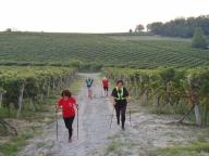 CAMMINATE IN TECNICA NORDIC WALKING